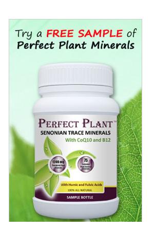 FREE Perfect Plant Multivitami...