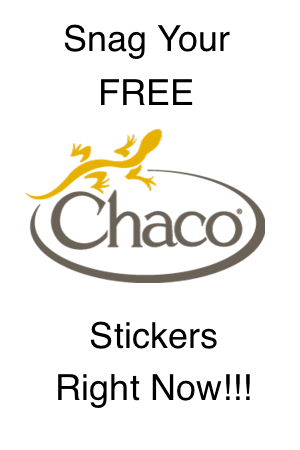 snag free chaco lizard stickers snag free samples