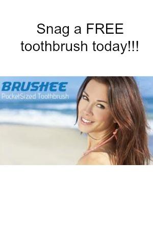 Brushee2